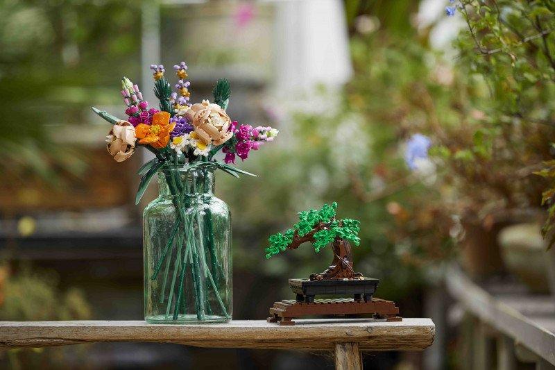 Merakit koleksi botani untuk hijaukan rumah